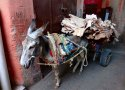 Donkey Cart & Leather