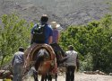 High Atlas Horse Trekking