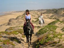 Horse Trekking by the Sea