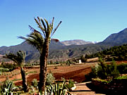 High Atlas - Ouirgane Trekking