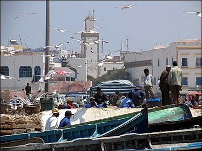 Harbour at Essaouira  (c) Paul Charter