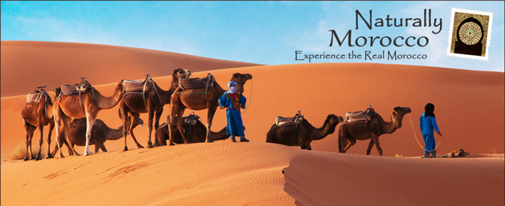 Try Something Different in Morocco