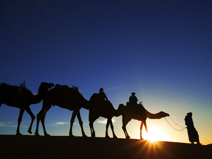 Camel trekking at sunset